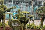 the beatles garden