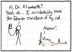 cartoon fourier cat