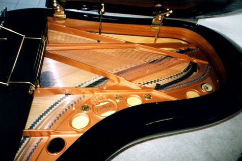 inside of pegasus piano by luigi colani