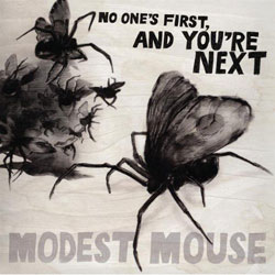Satellite Skin Modest Mouse