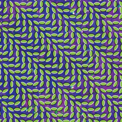My Girls Animal Collective