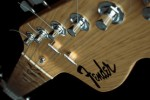 fender guitar