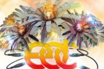 electronic daisy carnival